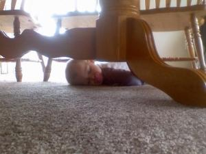 sleeping under the table
