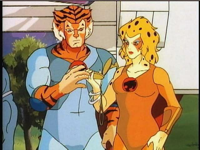 cheetara and tygra relationship quiz