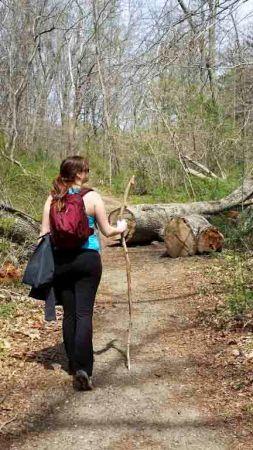 brandywine hiking