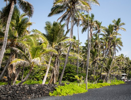 black sand beach punaluu beach hawaii one of the worlds most beautiful beaches