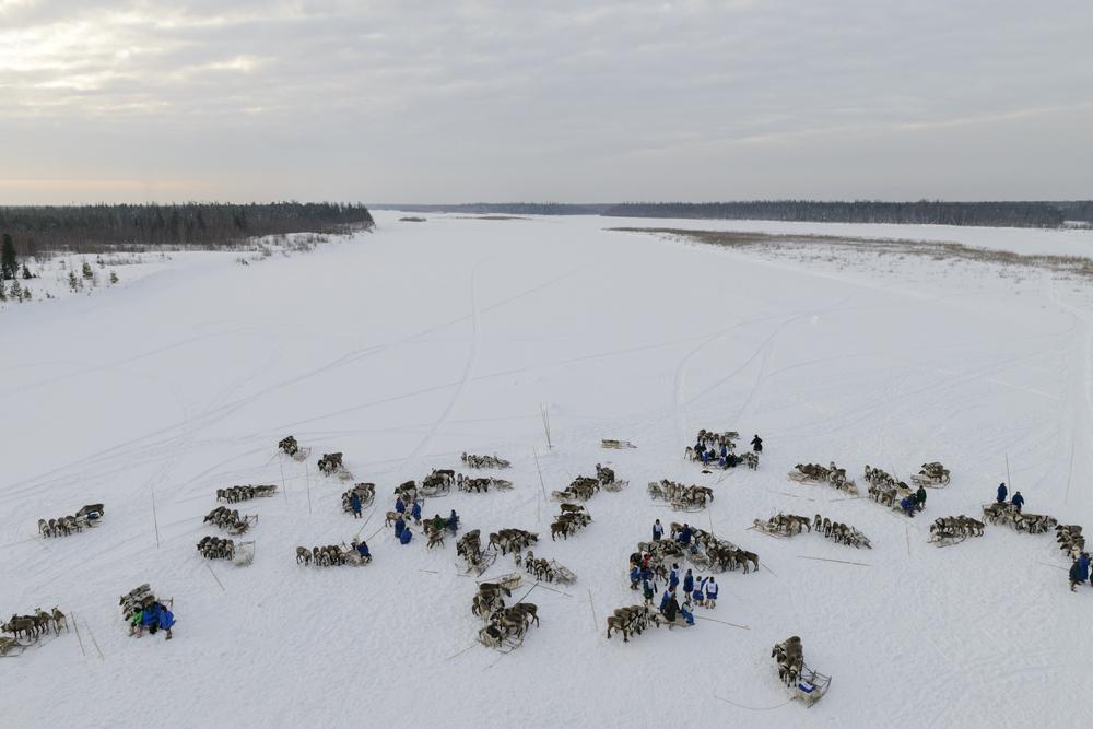 Reindeer herders on the Yamal Peninsula, Siberia, Russia