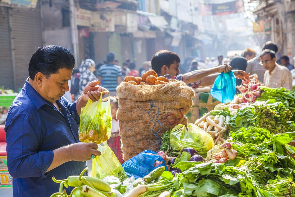 India vegetarian