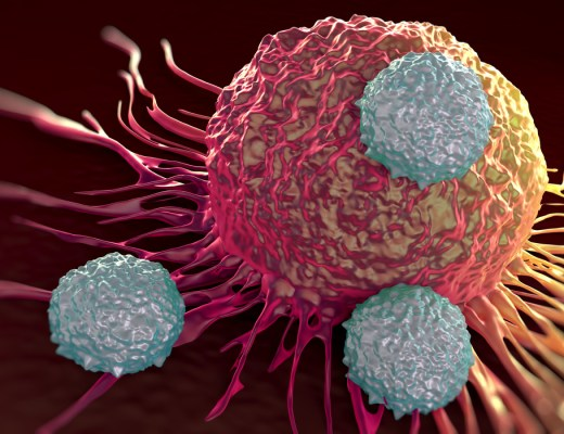 immunotheraphy involving t-cells from one's own immune system saved woman from breast cancer