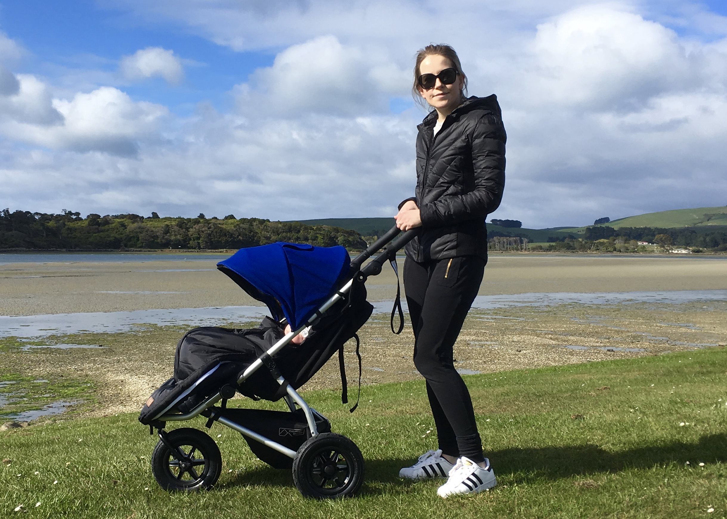Newborn Baby Buggy Reviews How We Picked A Stroller The Mountain Buggy Swift Review