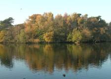 Lake view of Hartsholme park in Lincoln. Photo: CoLC