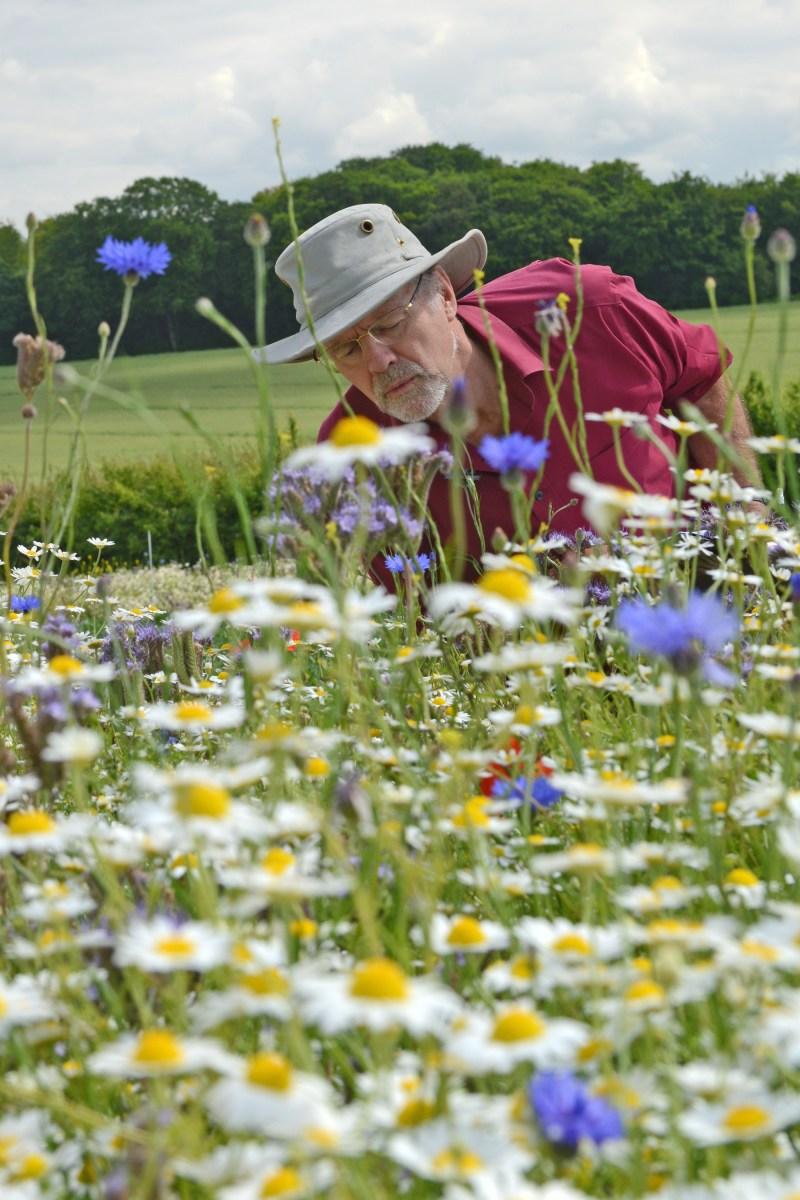 Bee entomology specialist, Mike Edwards