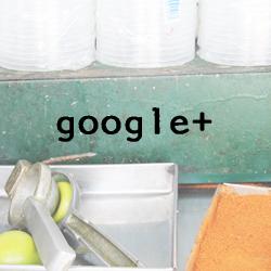 aboutus_google+