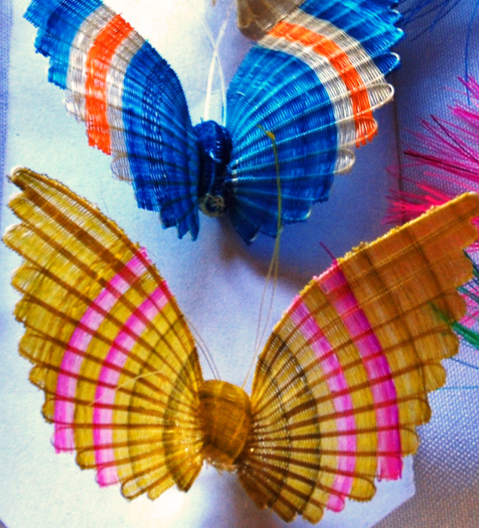 thelocalist.com-crin-butterflies-Chile
