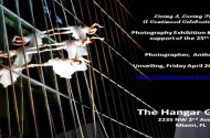 Photo Exhibit at The Hangar