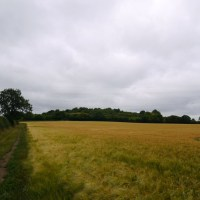 Chilterns Walk from Princes Risborough to West Wycombe