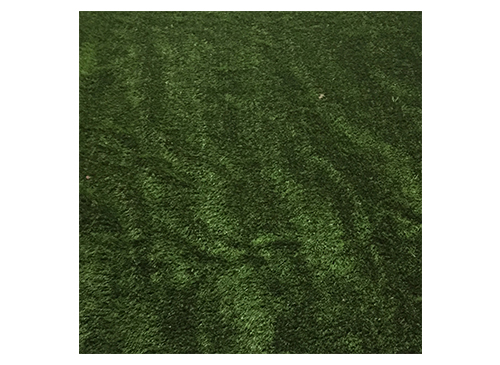 Grass Rug The Lounge