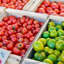 thumbs tomatos University Farmers Market Early Fall 2011