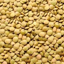 Northwest Green Chilean Lentils