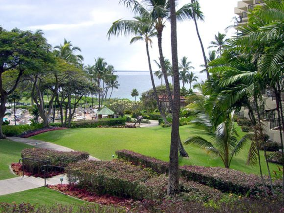 Wailea Renaissance Resort Maui Hawaii Maui Sweet