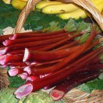 Rhubarb at Northwest Farmers Market