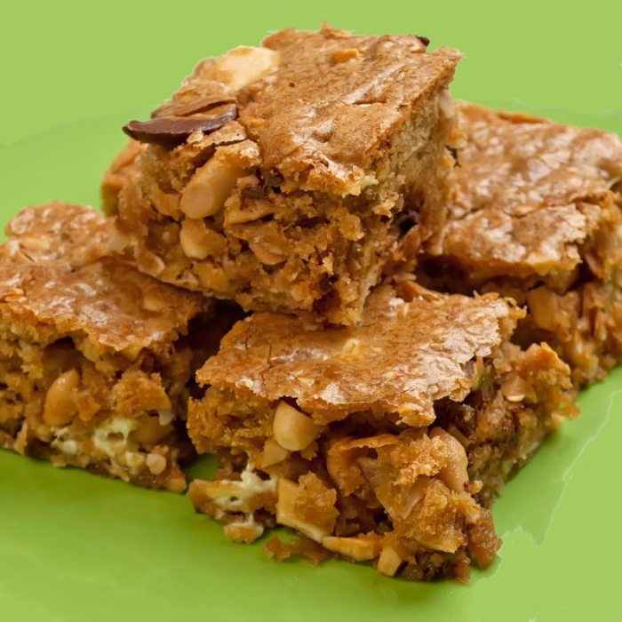 Chewy Gooey Congo Bars (Blondies on Steroids)