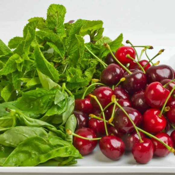 Northwest Bing Cherries with Fresh Basil Mint Sweet Cherry & Pea Vine Salad with Basil & Mint