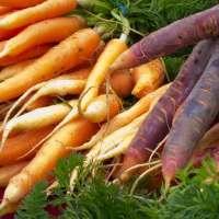 Sweet Carrot Bisque with Umami Pesto