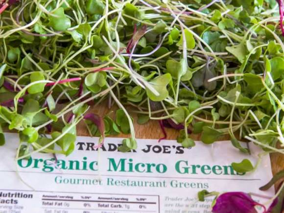 Micro Greens for Garnishing Chilled Green Pea Soup
