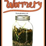 Make Your Own Wormery!