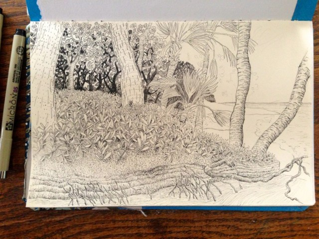 micron pen drawing of the beach at the end of Cemetery Trail on Cayo Costa Island