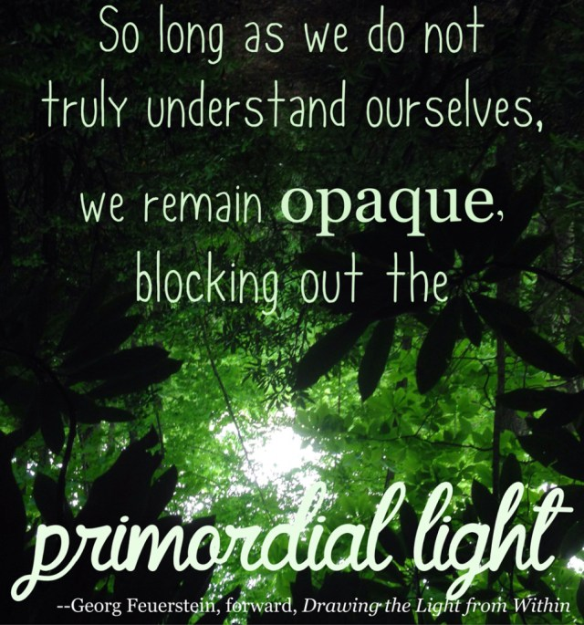 So long as we don't truly understand ourselves, we remain opaque to the primordial light