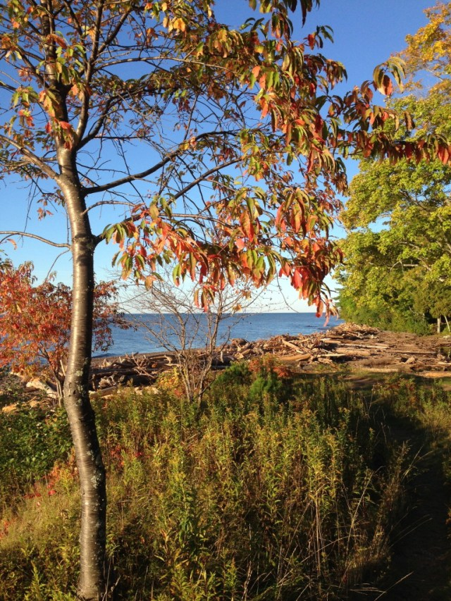 at the mouth of the Presque Isle River