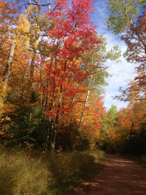 autumn color at porcupine mountains