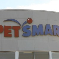 Pawsitively Clean, Carpet Rental Machine at PetSmart Review & Giveaway