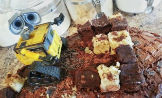 The 3rd Birthday Cake – Foreign Contaminant