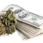 Marijuana Tax Refund