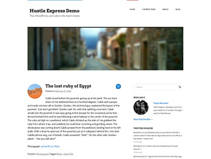 Hustle Express WordPress Theme