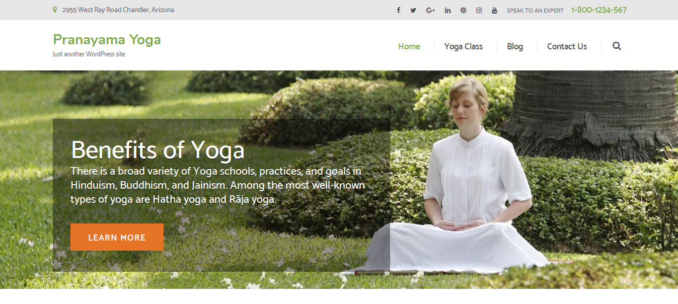 Free Wordpress Yoga Template Top 10 Superb Free Fitness Wordpress Themes Themecot