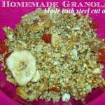 Homemade Granola {Steel Cut Oats} Recipe