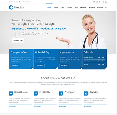 15+ Best Medical WordPress Themes for Dentists  Hospitals (2019)