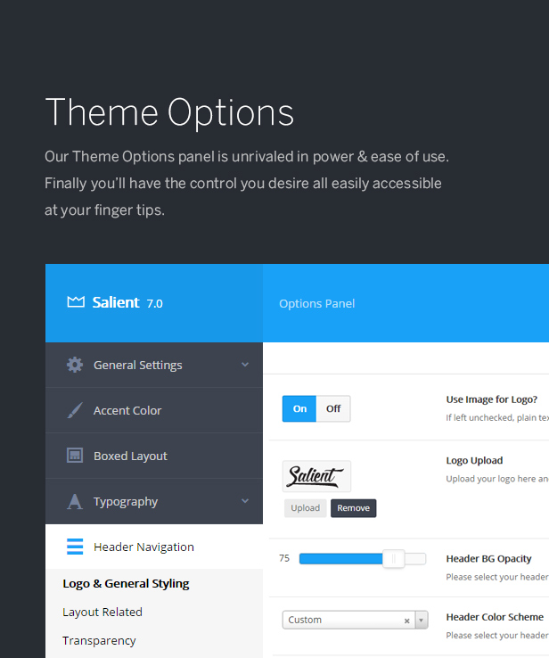 theme options panel