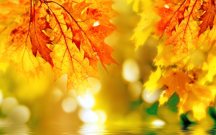Dual Monitor Wallpaper Fall Autumn Windows 10 Theme Themepack Me