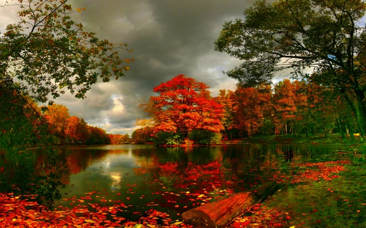 Fall In Love With Me Wallpaper Autumn Windows 10 Theme Themepack Me