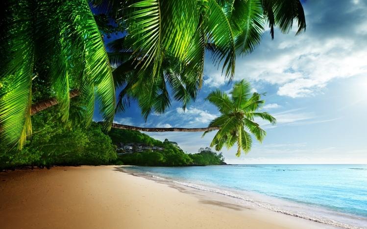 Fall Mountaons In The Sun Wallpaper Tropical Windows 10 Theme Themepack Me