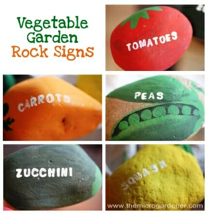 20 Creative DIY Plant Labels  Markers - The Micro Gardener
