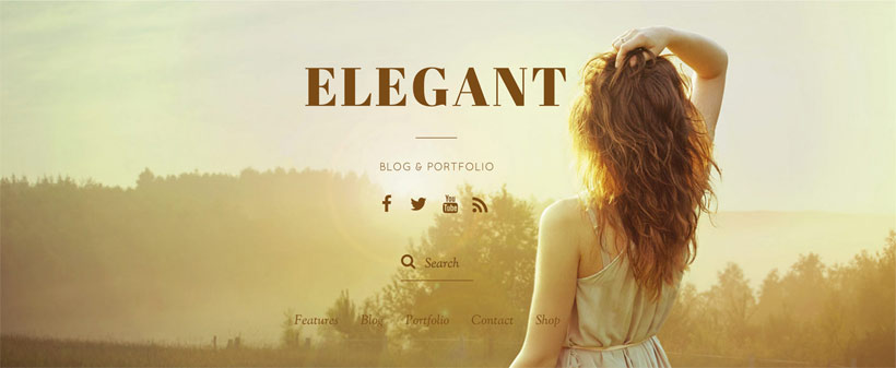 Elegant Theme - Minimal Blog  Portfolio