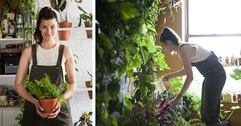 Woman Transforms Her Brooklyn Apartment Into Indoor Jungle with 500 Lush Plants