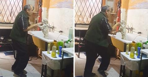 World's Sweetest Groomer Caught Dancing With A Client's Dog By Stephen Messenger