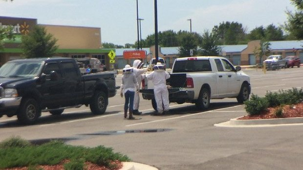 Three people were taken to a hospital and many more were treated on scene Saturday, Aug 6, 2016, after bees got loose from hives outside a Del City Wal-Mart in Oklahoma. Beekeepers were called to gather the insects. (KOCO-TV)