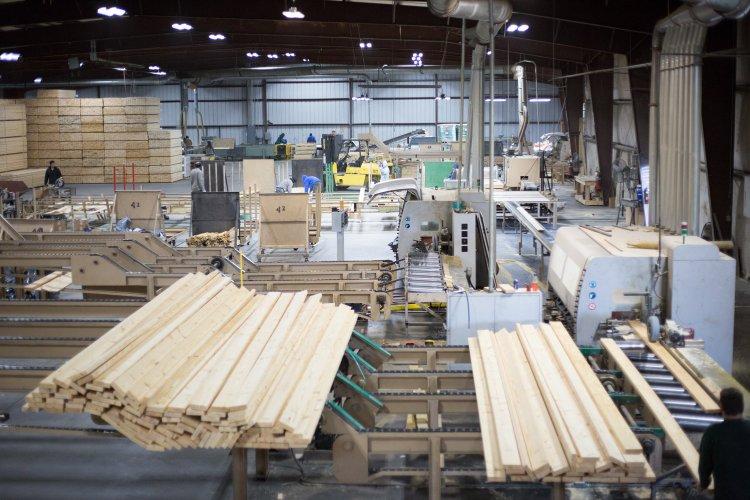 east+coast+lumber+yard+Kisley-24