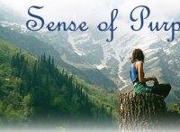 Featured Sense Of Purpose