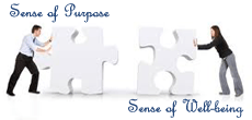 Sense of Purpose and Well-Being