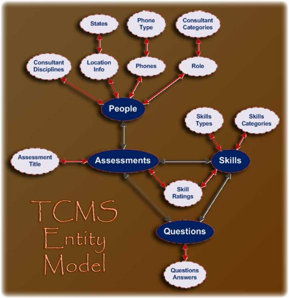 The TCMS Domain Entity Diagram