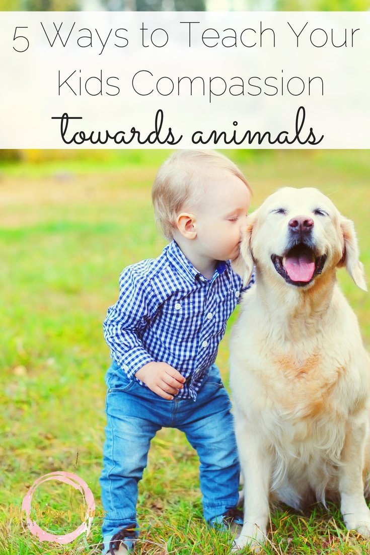 There are many ways in which we can instill  love and respect for animals in our children, here are just 5 ways to teach your kids compassion for animals.