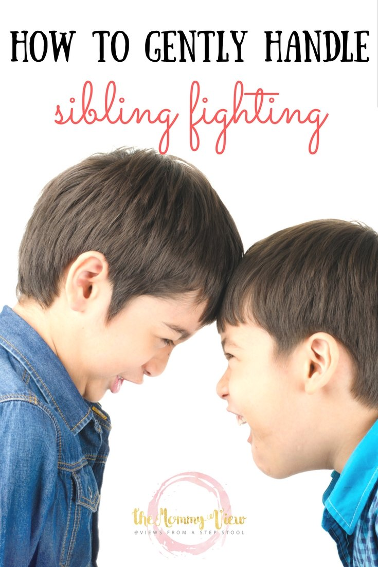 In gently responding to your kids fighting, you can model patience, teach empathy, and demonstrate positive problem solving skills.